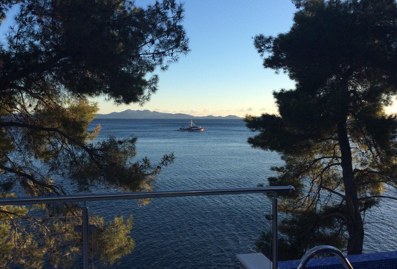 vue de la terrasse en soirée sur mer, pins, bateau de pêche
